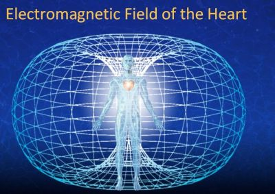 electromagnetic-field-of-the-heart